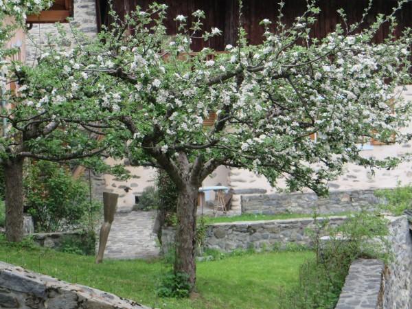 Tuin L'Etoile du Berger in het voorjaar